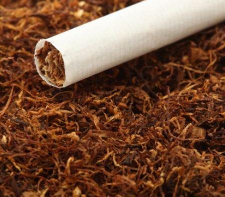 Tytoń i szkodliwe naczynia